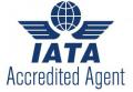 iata accredited agent